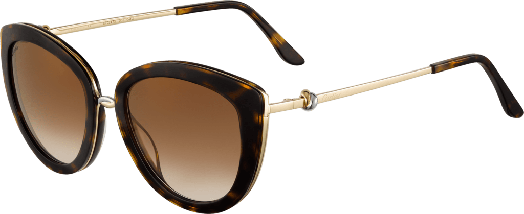 Trinity sunglassesCombined tortoiseshell composite, smooth golden-finish and platinum-finish metal, brown lenses with golden flash